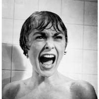 Janet Leigh= Psycho Screaming Picture